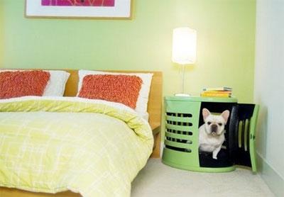 Мебель для домашнего питомца
