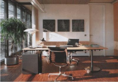 Особенности офисного декора