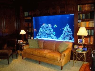 Несколько причин для использования аквариума в интерьере